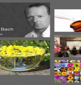 20210430 Michelle Bach Flower Remedies