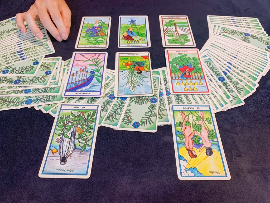 2021052914 The Herbal Tarot Kiwi Tarot by shff.tw