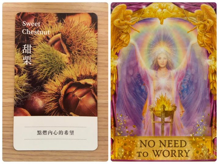 2021060103 Sweet Chestnut & NO NEED TO WORRY Angel Answers Oracle Cards Divination by Luc