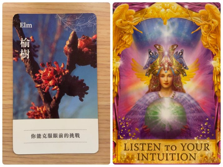 2021060701 Elm & LISTEN TO YOUR INTUITION Angel Answers Oracle Cards Divination by Luc