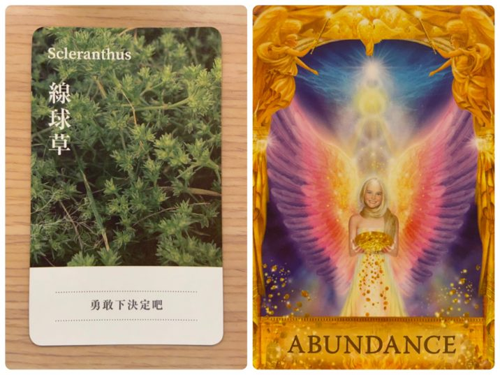 2021071902 Scleranthus & ABUNDANCE ANSWERS Angel Answers Oracle Cards Divination by Luc
