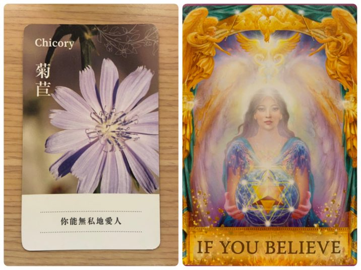 2021092004 Chicory & IF YOU BELIEVE Angel Answers Oracle Cards Divination by Luc