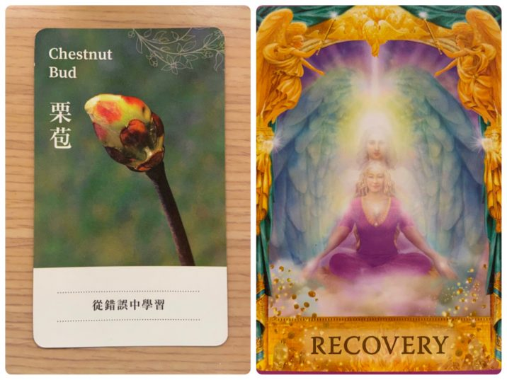 2021092701 Chestnut Bud & RECOVERY Angel Answers Oracle Cards Divination by Luc