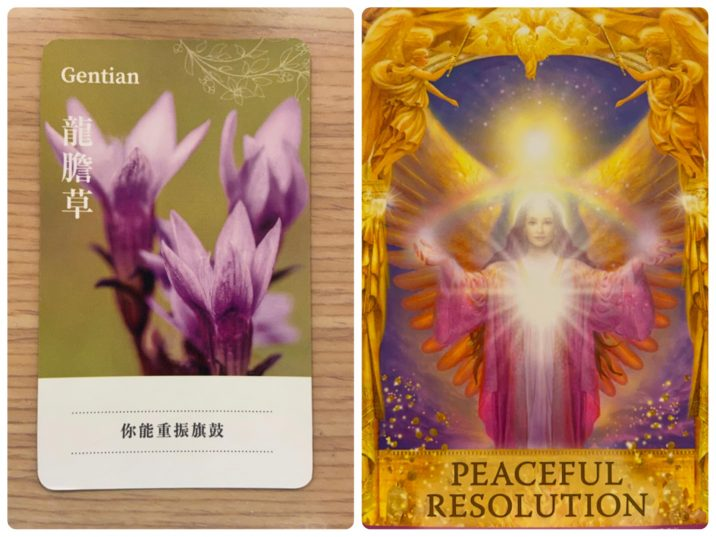 2021092702 Gentian & PEACEFUL RESOLUTION Angel Answers Oracle Cards Divination by Luc