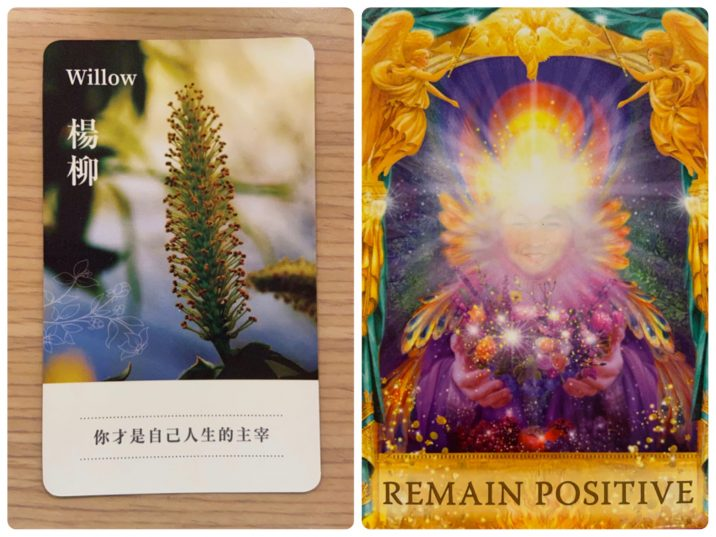 2021092703 Willow & REMAIN POSITIVE Angel Answers Oracle Cards Divination by Luc