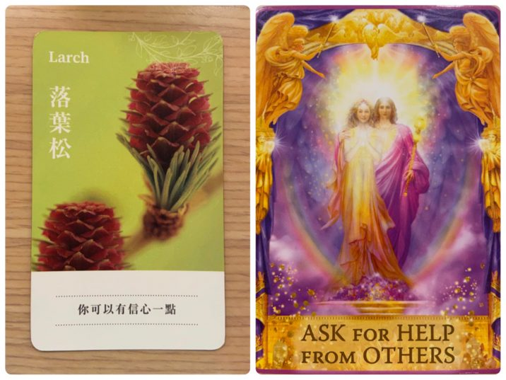 2021100401 Larch & ASK FOR HELP FROM OTHERS Angel Answers Oracle Cards Divination by Luc