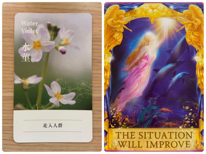 2021101101 Water Violet & THE SITUATION WILL LMPROVE Angel Answers Oracle Cards Divination by Luc