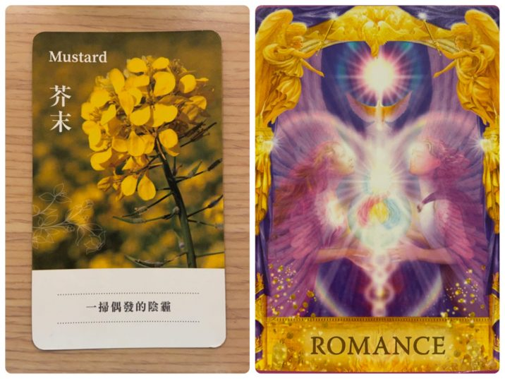 2021101103 Mustard & ROMANCE Angel Answers Oracle Cards Divination by Luc