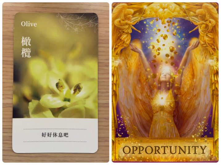 2021101104 Olive & OPPORTUNITY Angel Answers Oracle Cards Divination by Luc